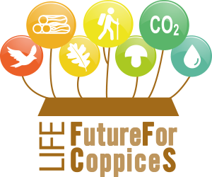 FutureForCoppiceS verticale